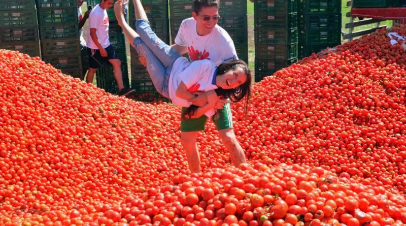 почему люди боялись помидоров