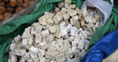 тибетский сыр из молока яка чура