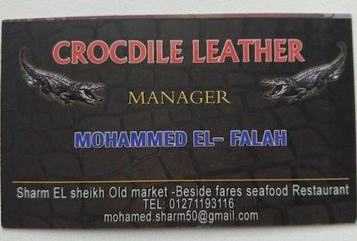 изделия из кожи змеи и крокодила шарм-эль-шейх