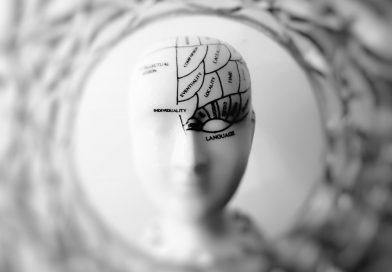 чем питается мозг