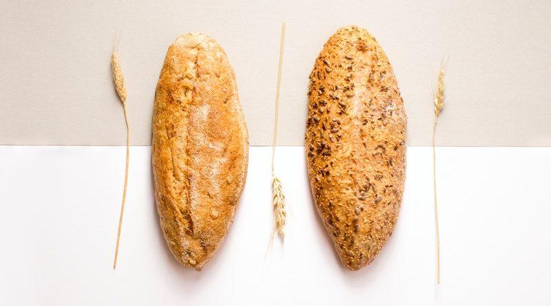 почему плесневеет хлеб